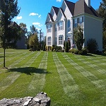 Lawn Maintenance Darien CT